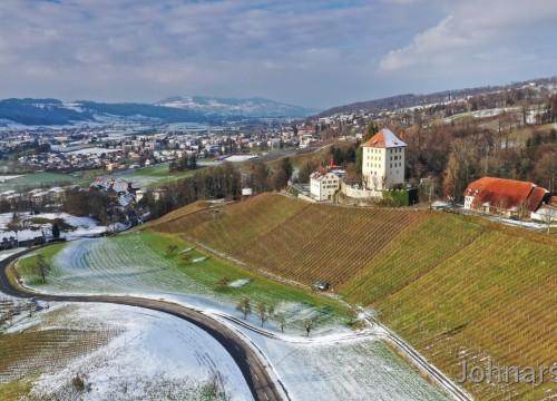 Schloss Heidegg dahinter Hitzkirch