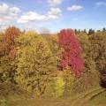 Herbst 2017